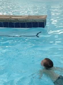 owen swim 1